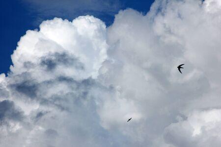 photons: Sky Stock Photo