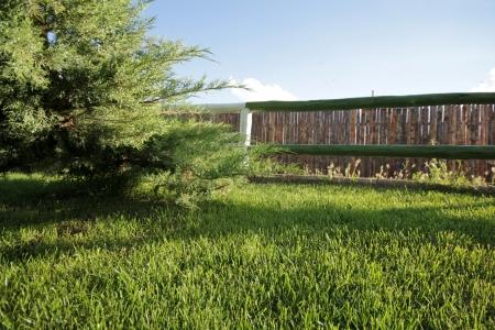 stockade: grass