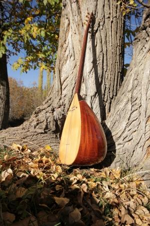 saz: Turkish instrument