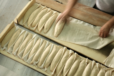 Breads in making photo