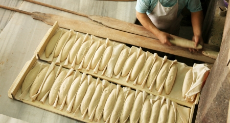 Breads in making