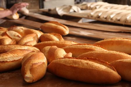 artisan bakery: Bread