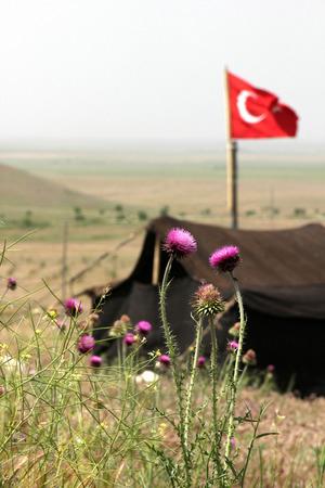 stil: Nomadic Tent