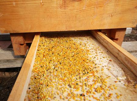 pellet gun: Pollen