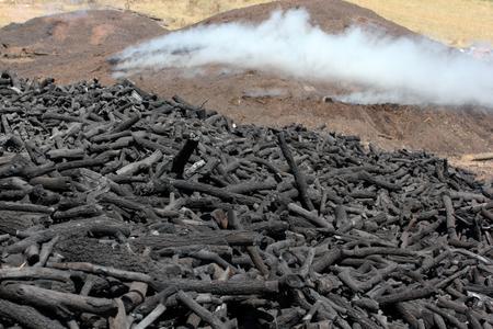 fundus: Wood Coal Background