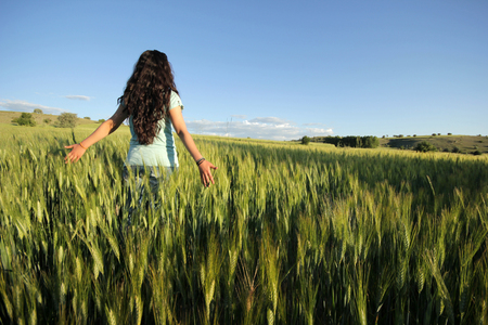 non cultivated land: In the wheat field
