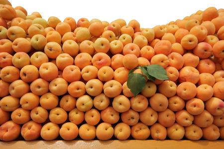 apricot: Apricot Stock Photo