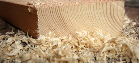 carpenter's sawdust: Timber and wood chips background