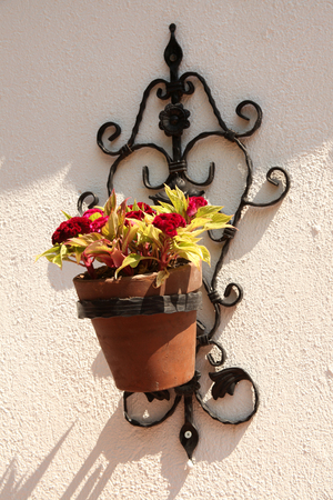 Decorative and floral wall pot