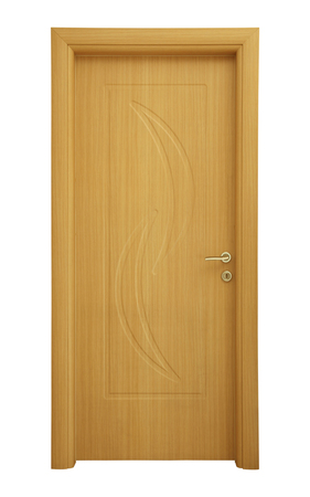 Modern wooden interior door