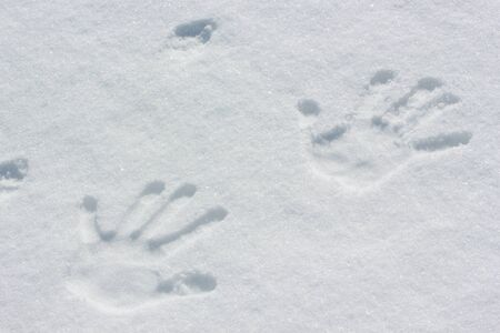 Human handprint in the snow