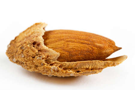 roasted, shelled and salted almonds