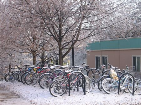 Bikes covered in snow at the University of Michigan