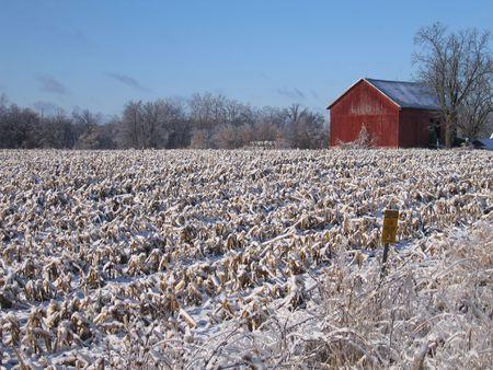 Barn in Dexter, Michigan photo