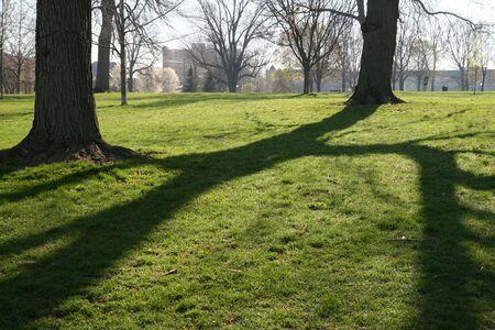 Sunlight streaming through trees in Goodale Park, Columbus Ohio photo