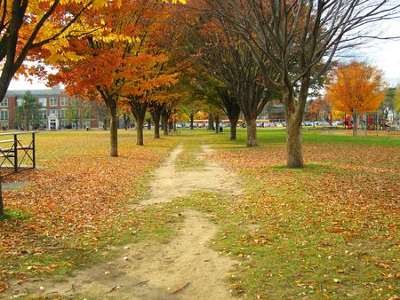 The beautiful Burns Park neighborhood and school, an affluent area of Ann Arbor, Michigan photo