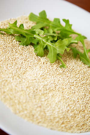 Arugula greens on a bed of quinoa: two healthy and trendy foods