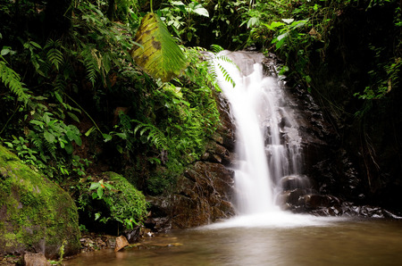 ecotourism: Waterfall in the cloudforest near Mindo, Ecuador