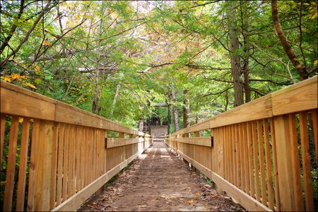 Woodland trail and bridge through Hocking Hills State Park near Logan, Ohio