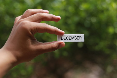 Text December written on wood stick hold by hand in nature green background. Holidays, reminder and month calendar concept. Selective focus. Stock Photo