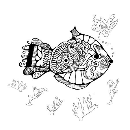 blanket fish: single isolated fish. stock vector illustration.