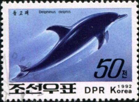North Korean postal miniature with the image of jumping on the waves of the Dolphin-common Dolphin