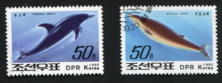 Postal miniatures of North Korea with the image of the representatives of marine fauna  the Dolphin common Dolphin-and berardius bairdii on the background of the ocean waves
