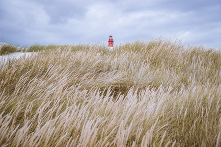 Sea grass dunes with lighthouse on top in the northern sea.