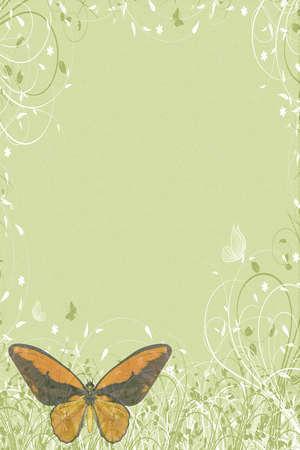 green butterflies letter photo