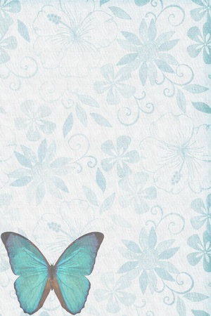Butterflies texture letter blue photo
