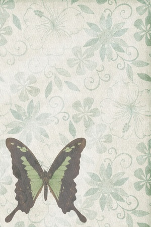 Butterflies texture letter old green photo