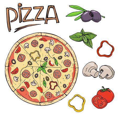 Pizza and ingredients on white background. Colorful vector illustration in sketch style.