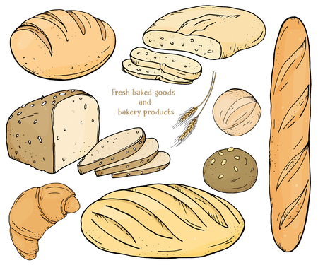 Set with bakery products on a white background. Baguette, loaves, rye bread, ciabatta and scones. Vector illustration in sketch style. Çizim