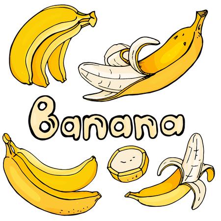 Establecer con plátanos de color amarillo brillante sobre un fondo blanco. Ilustración de vector colorido en estilo boceto.