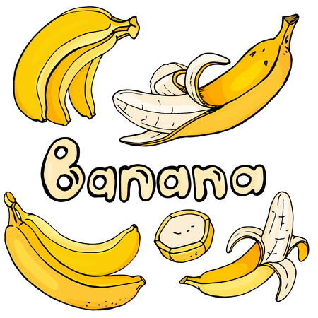 Set with bright yellow bananas on a white background. Colorful vector illustration in sketch style.