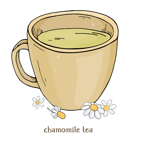 Cup of chamomile tea. A Cup of chamomile flowers. Colorful vector illustration in sketch style.