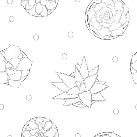 pattern with succulents. Black outline on a white background. Black and white illustration. Ilustração