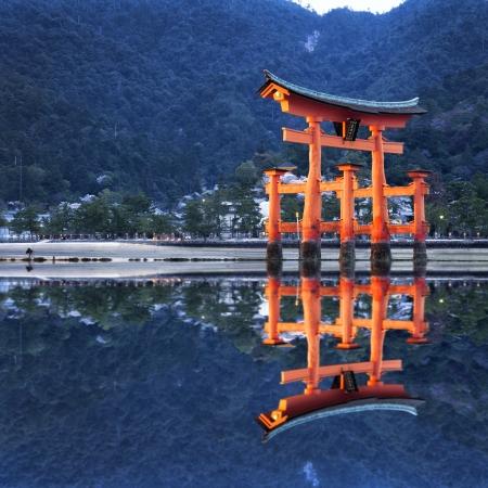 Tori reflection in japan