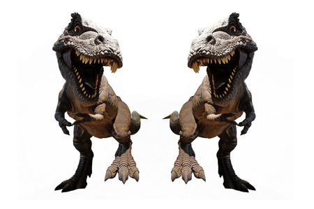 Isolated Dinosaurs model on white background