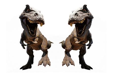 Isolated Dinosaurs model on white background