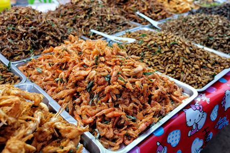 Fried insects street food in Thailand This is fried insect food is high in protein. And delicious, especially bamboo worms, which are expensive