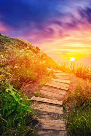 Nature trail walk way