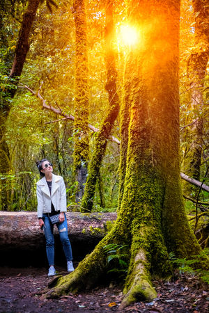 Young woman traveling in green forest Stock Photo