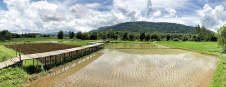 Panoramic view of beautiful countryside Rice fields and mountain in Thailand Reklamní fotografie