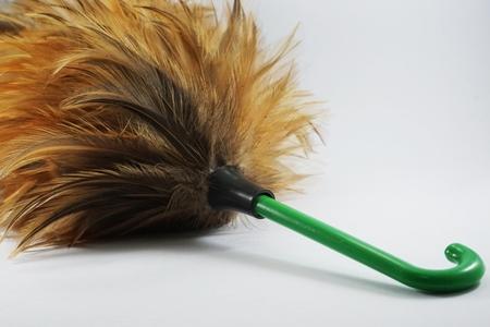 broom: Feather broom
