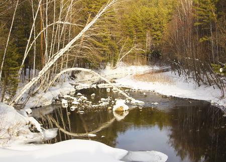 winter runs a river in a river a big stone fell into a river a tree