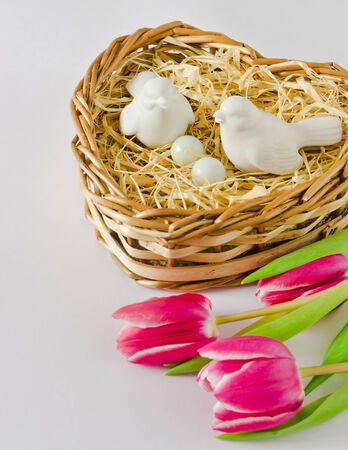 birds in a nest in the shape of heart photo