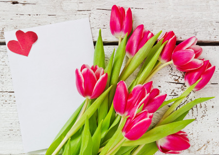 hoja en blanco: hermosos tulipanes, hoja de papel en blanco y de San Valent�n Foto de archivo