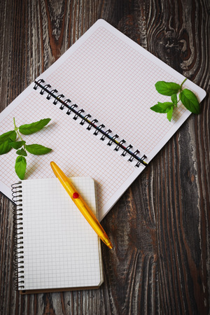 sprigs: blank notepad for recipes and sprigs of fresh mint on dark wooden background. culinary concept Stock Photo