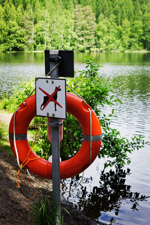 rescue people: lifebuoy on the shore of a forest lake. help and rescue people in the water